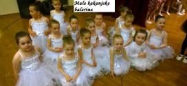 Najava: Upis u kakanjsku školu baleta