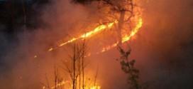 Savjetima mjesnih zajednica upućen dopis u vezi aktuelnog negativnog trenda spaljivanja svega i svačega