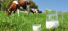 Javni poziv za podnošenje zahtjeva za općinski podsticaj za proizvodnju svježeg kravljeg mlijeka za II kvartal 2018. godine
