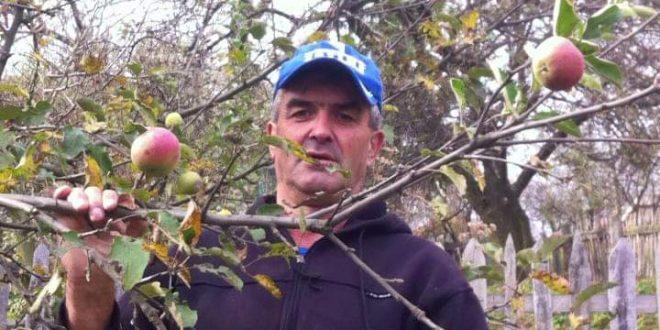Zanimljivost u voćnjaku Senada Hodžića iz Bijelih Voda, općina Kakanj: Jabuka rodila po drugi put u ovoj godini