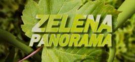 """Kakanj u """"Zelenoj panorami"""""""